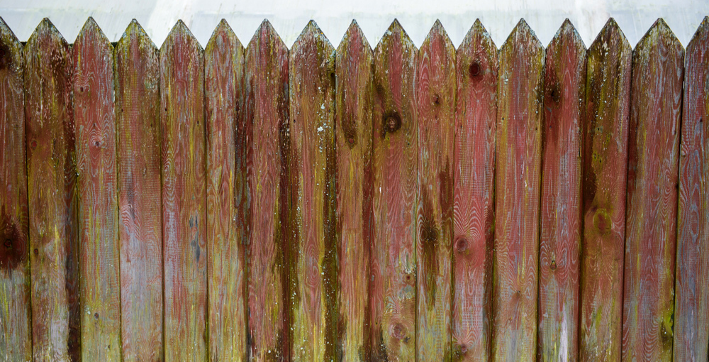 How to stain an old fence